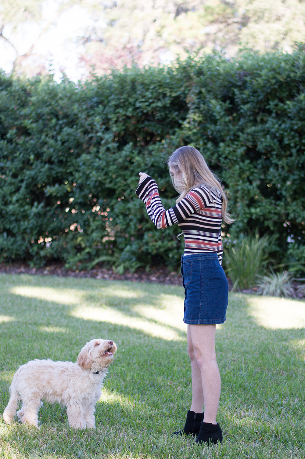 free-people-styelled-blog-fashion-blogger-street-style-fblogger-sweater-weather-top-shop-topshop-forever-21-labradoodle-21